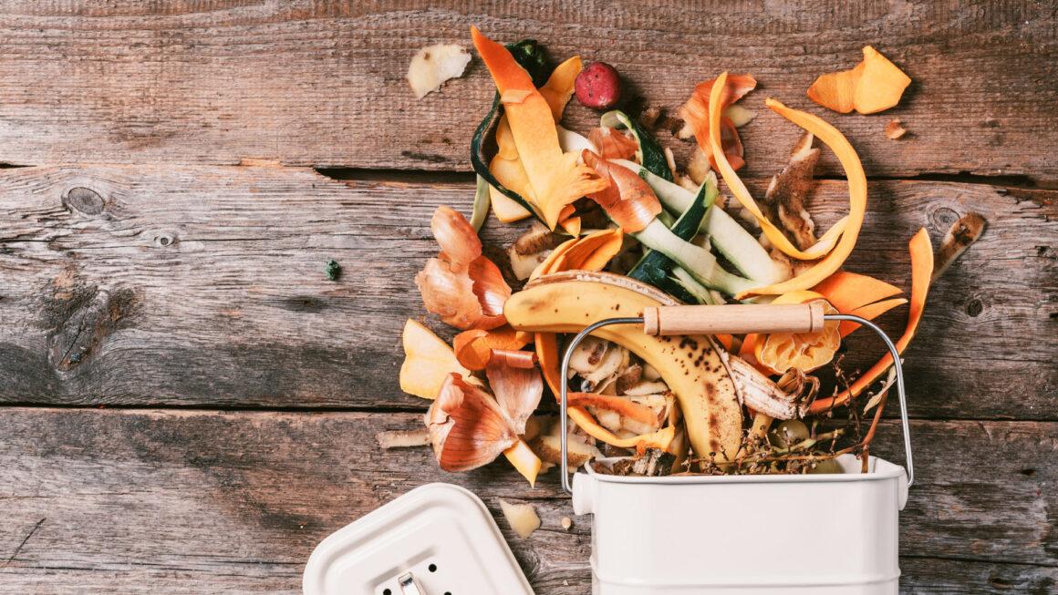 Lebensmittelreste und Biogasanlagen